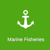 Mariene Fisheries